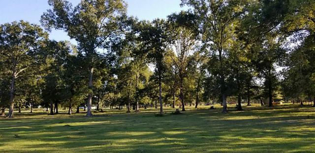 100 E Hill Ranch, New Waverly, TX 77358 (MLS #73823742) :: Mari Realty