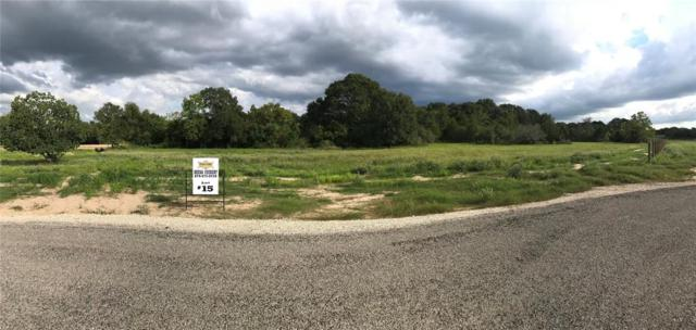 4300 Eli Road, Bellville, TX 77418 (MLS #74001586) :: Connect Realty