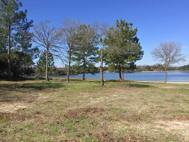 12 & 14 Cherokee Drive, Hilltop Lakes, TX 77871 (MLS #74011577) :: Christy Buck Team