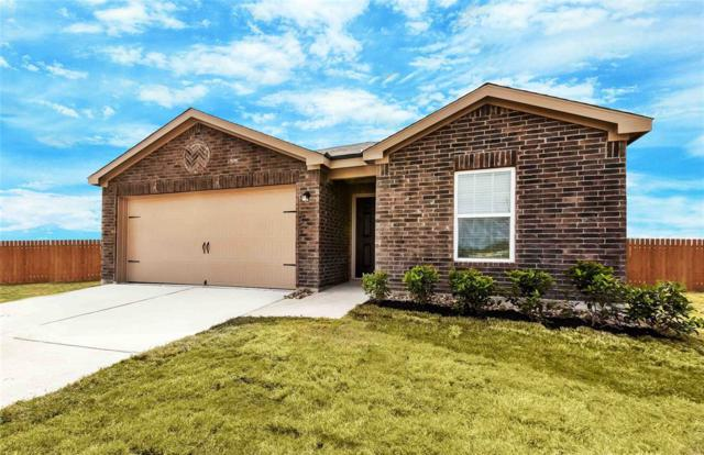 9506 Red Garnet Drive, Iowa Colony, TX 77583 (MLS #74069567) :: Green Residential