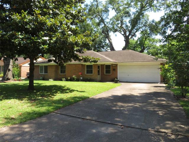 9909 Larston Street, Houston, TX 77055 (MLS #74091249) :: The Heyl Group at Keller Williams