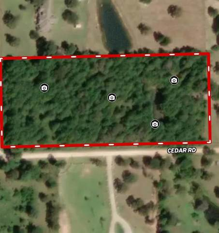 0 Clark Road, Plantersville, TX 77363 (MLS #74135431) :: Ellison Real Estate Team