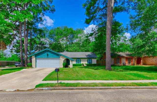 17203 Camberwell Green Lane, Houston, TX 77070 (MLS #74168721) :: Lerner Realty Solutions