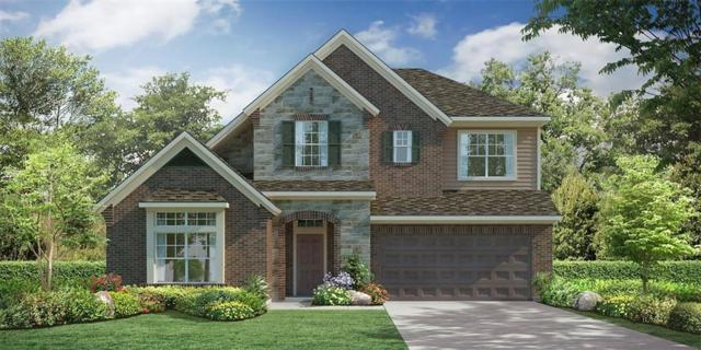 29907 Anna Trails, Tomball, TX 77375 (MLS #74240242) :: The SOLD by George Team