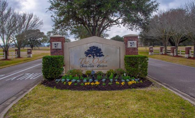 18503 Cypress Hill Drive, Rosharon, TX 77583 (MLS #74278113) :: Texas Home Shop Realty