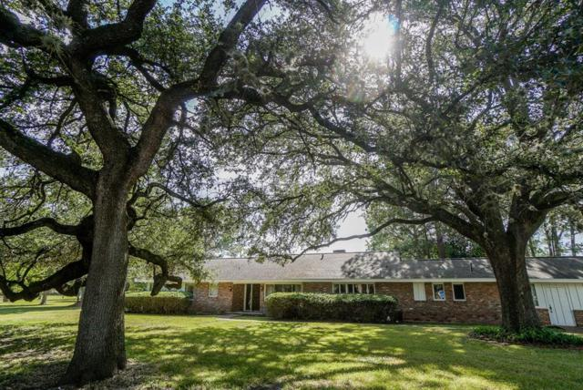 8215 Wateka Circle, Houston, TX 77074 (MLS #74315861) :: Texas Home Shop Realty