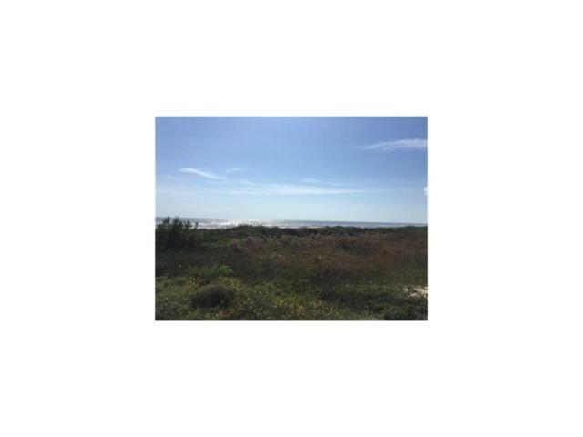 1418 Hwy 87, Crystal Beach, TX 77650 (MLS #74317984) :: Caskey Realty