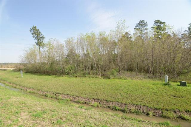 27598 S Lazy Meadow Way, Spring, TX 77386 (MLS #74355505) :: Caskey Realty