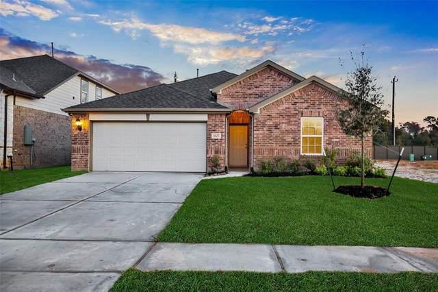 3911 Palmer Meadow Court, Katy, TX 77494 (MLS #74422200) :: CORE Realty