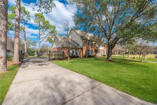6030 N Woods Lane, Katy, TX 77494 (MLS #74504681) :: See Tim Sell