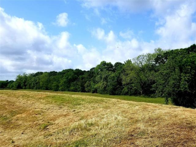00 Hwy 35, Angleton, TX 77515 (MLS #74551316) :: The SOLD by George Team