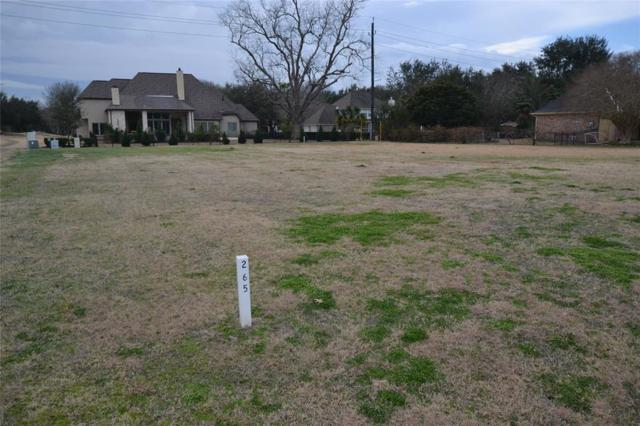 32811 Waltham Crossing, Fulshear, TX 77441 (MLS #7455529) :: Lion Realty Group/Clayton Nash Real Estate