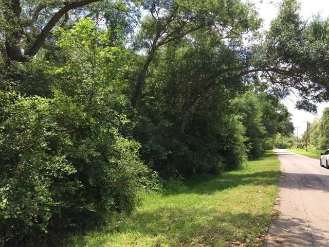 TBD Bayou Drive County Rd 848, Danbury, TX 77534 (MLS #74566563) :: Green Residential