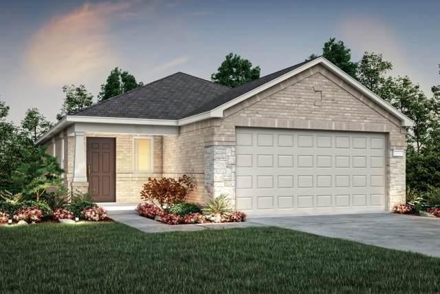 22667 Bolanzo Lane, New Caney, TX 77357 (MLS #74686581) :: Parodi Group Real Estate