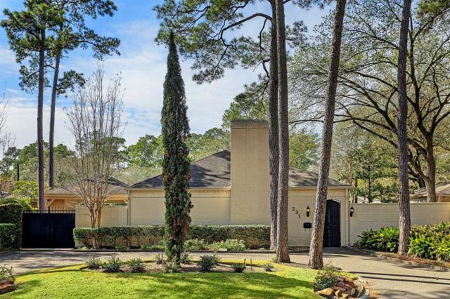 231 Gessner Road, Houston, TX 77024 (MLS #74700526) :: The Heyl Group at Keller Williams