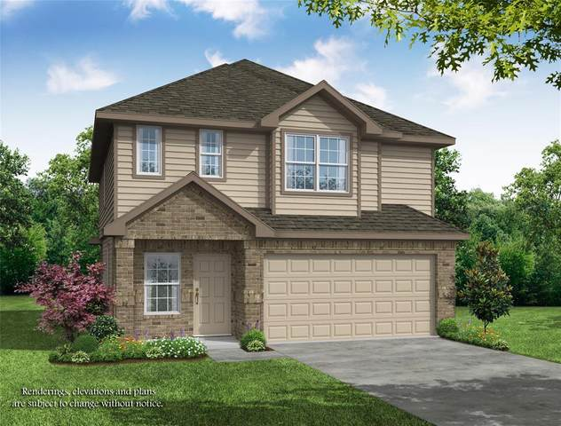 23646 Rainbow Eucalyptus Drive, Spring, TX 77373 (MLS #74810821) :: The Home Branch