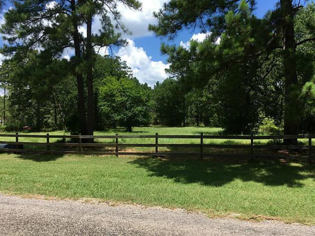0000 Dahlia, Huntsville, TX 77320 (MLS #74865263) :: Giorgi Real Estate Group