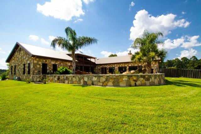 24250 Stuebner Airline Road, Tomball, TX 77375 (MLS #74866062) :: The SOLD by George Team