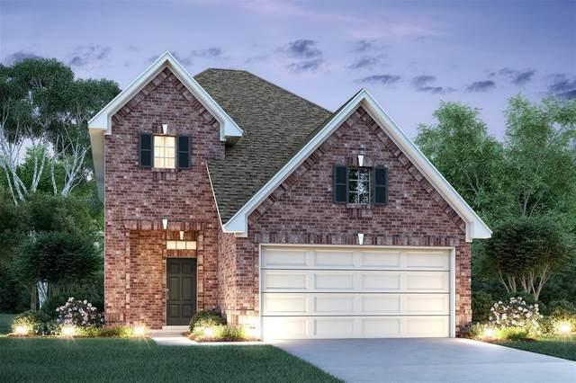 14207 Campo Vista Drive, Houston, TX 77083 (MLS #74889292) :: Michele Harmon Team