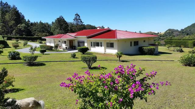 0 Las Plumas Ave D Norte Paso Ancho, Volcan,Chiriqui, Other, TX  (MLS #74905111) :: The Heyl Group at Keller Williams