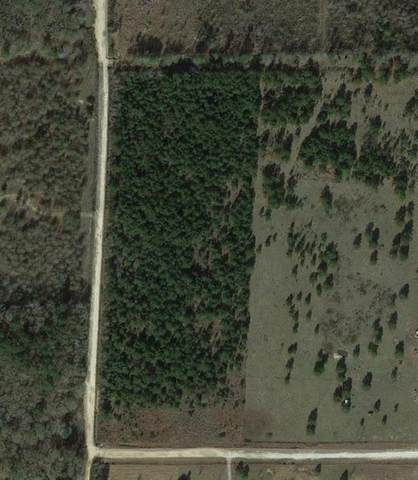 0 County Road 3011 West Of Texas, Dayton, TX 77535 (MLS #74915359) :: Lerner Realty Solutions