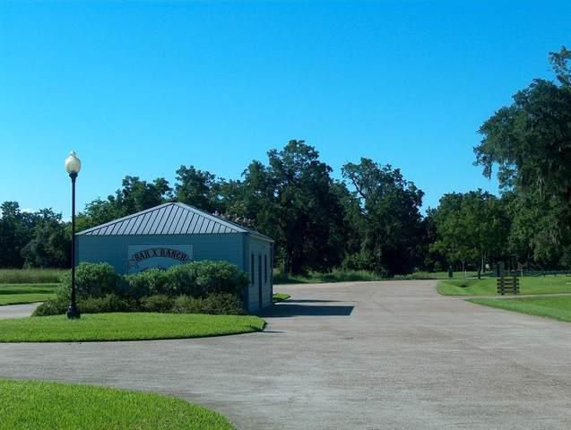 769 Trailblazer Drive, Angleton, TX 77515 (MLS #74968893) :: Keller Williams Realty