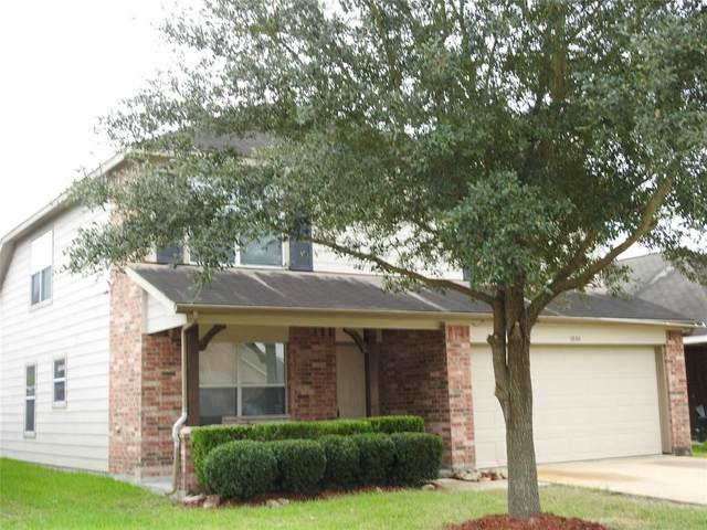 18211 Wild Orchid, Houston, TX 77084 (MLS #74978611) :: The Freund Group