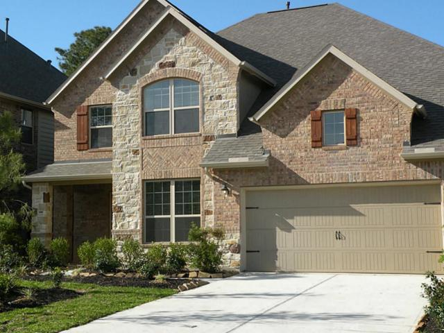 167 Lindenberry Circle, The Woodlands, TX 77389 (MLS #75008808) :: The SOLD by George Team