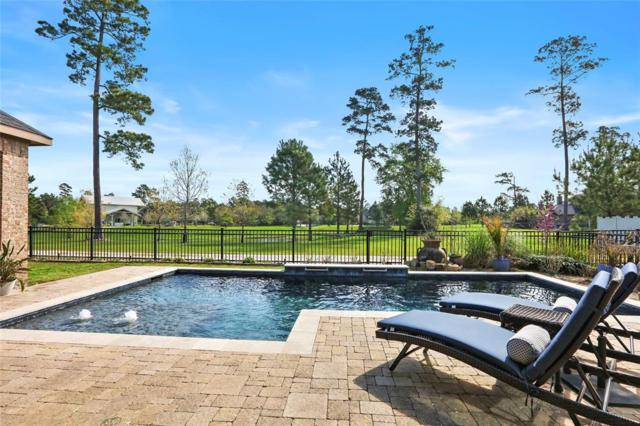 17163 Knoll Dale Trail, Conroe, TX 77385 (MLS #75020369) :: The Home Branch