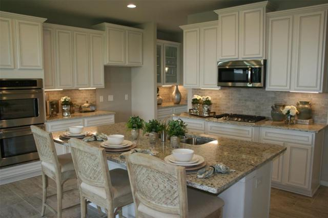 3827 Keatings Lagoon, Katy, TX 77494 (MLS #75067715) :: Texas Home Shop Realty