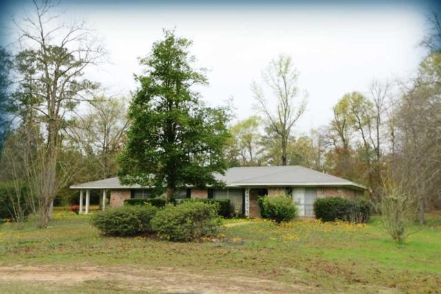 1124 Fm 363, Bon Weir, TX 75928 (MLS #75104895) :: Texas Home Shop Realty