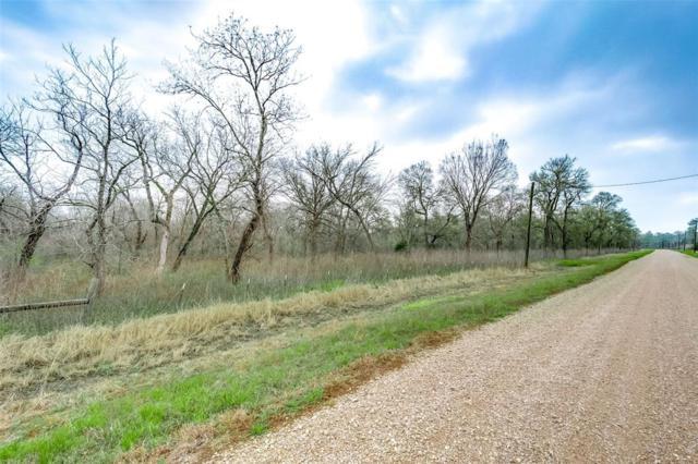 15425 Tierra Grande, Needville, TX 77461 (MLS #75117507) :: Texas Home Shop Realty