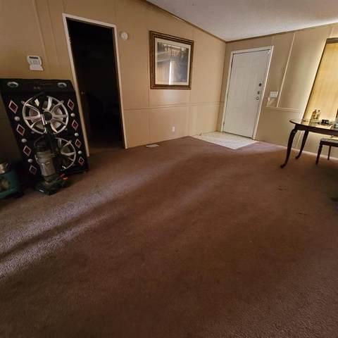 12239 N San Circle, Houston, TX 77044 (MLS #7514987) :: Lerner Realty Solutions