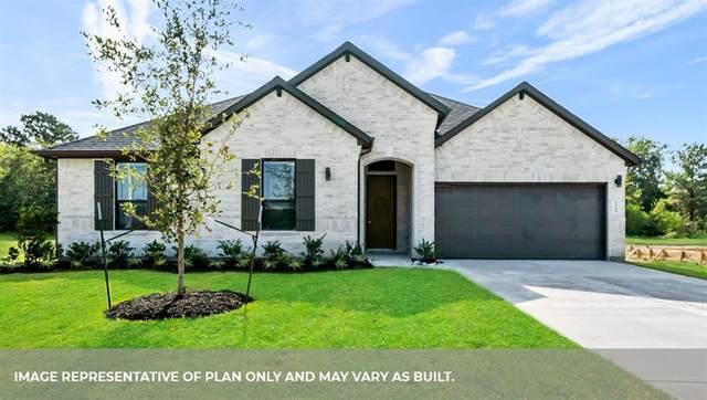 2523 Ravenna Court, Friendswood, TX 77546 (MLS #75153970) :: Christy Buck Team