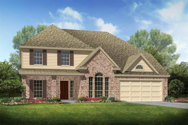 1114 Boxwood Place, Friendswood, TX 77546 (MLS #75182820) :: REMAX Space Center - The Bly Team