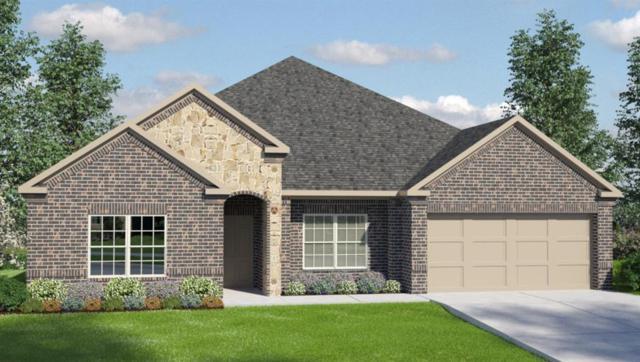 519 Yellow Bullhead, Rosenberg, TX 77469 (MLS #75268446) :: Magnolia Realty