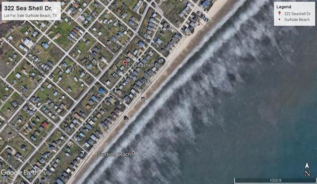 322 Sea Shell Drive, Surfside Beach, TX 77541 (MLS #75288765) :: The SOLD by George Team