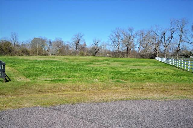 16903 Dewberry Court, Rosharon, TX 77583 (MLS #75313866) :: The Jennifer Wauhob Team