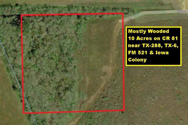 0 County Road 81, Rosharon, TX 77583 (MLS #75336237) :: The Home Branch