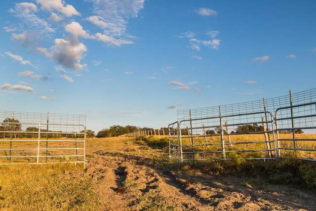 0000 County Road 251-Tract1, Weimar, TX 78962 (MLS #75354022) :: The Freund Group