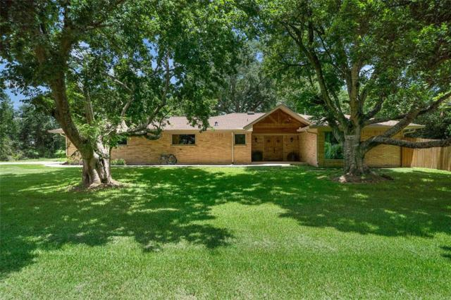12203 Oakline Drive, Pearland, TX 77581 (MLS #75366358) :: Texas Home Shop Realty