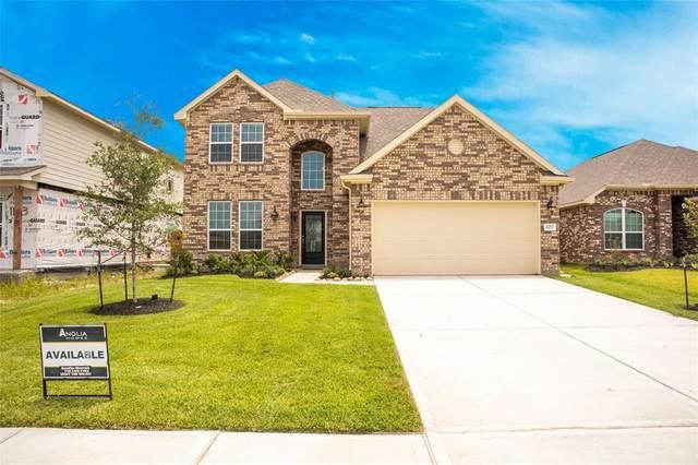 11017 Cathedral Peak Drive, Rosharon, TX 77583 (MLS #75480862) :: Michele Harmon Team