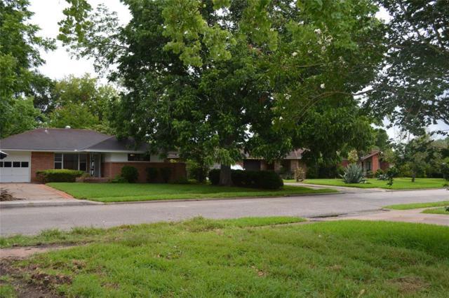 2818 Wuthering Heights Drive, Houston, TX 77045 (MLS #75517642) :: Team Sansone