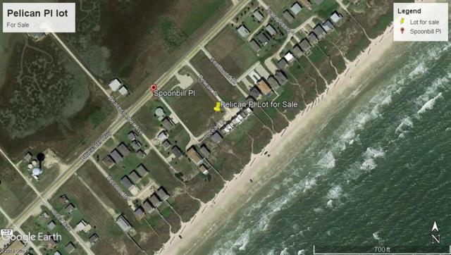 000 Pelican Place, Surfside Beach, TX 77541 (MLS #75637252) :: Texas Home Shop Realty