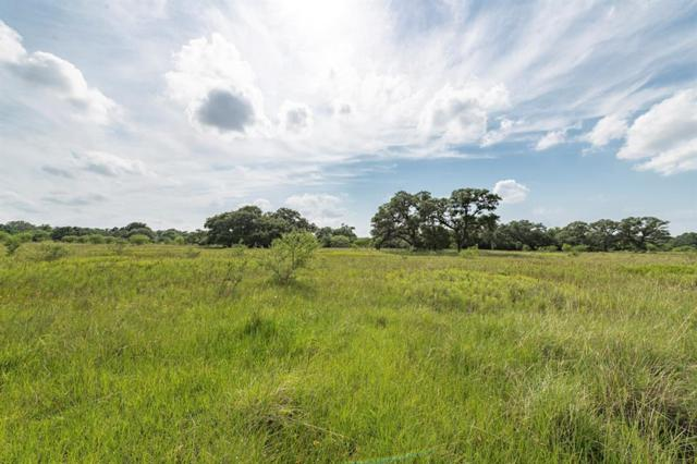 0 County Road 2104, Columbus, TX 78934 (MLS #75652018) :: The Parodi Team at Realty Associates