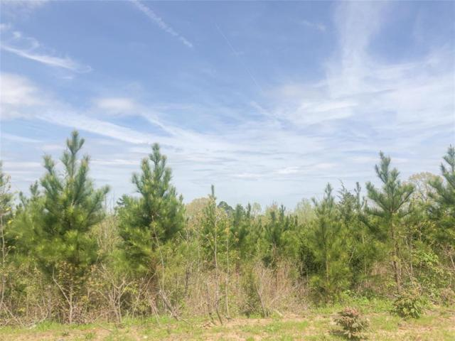 00000 County Road 3129, Queen City, TX 75572 (MLS #7565723) :: Giorgi Real Estate Group