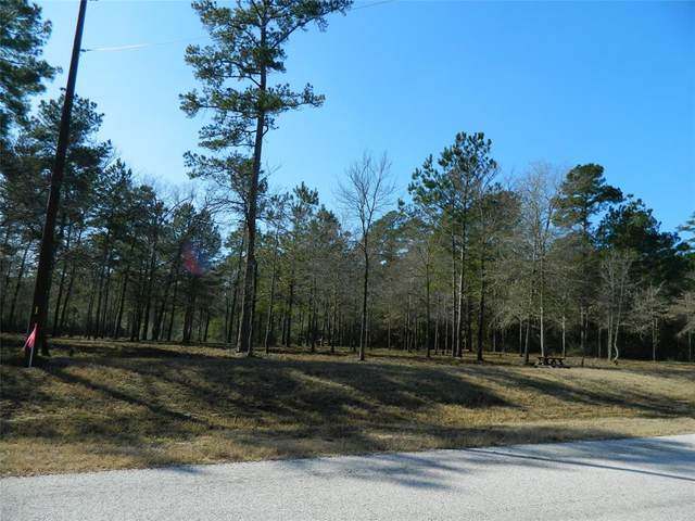 4A-7-36 Grizzly Lane, Huntsville, TX 77340 (MLS #7591534) :: Michele Harmon Team