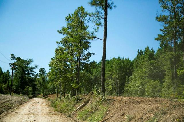 000 County Road 4020, Lovelady, TX 75851 (MLS #7596550) :: The Home Branch