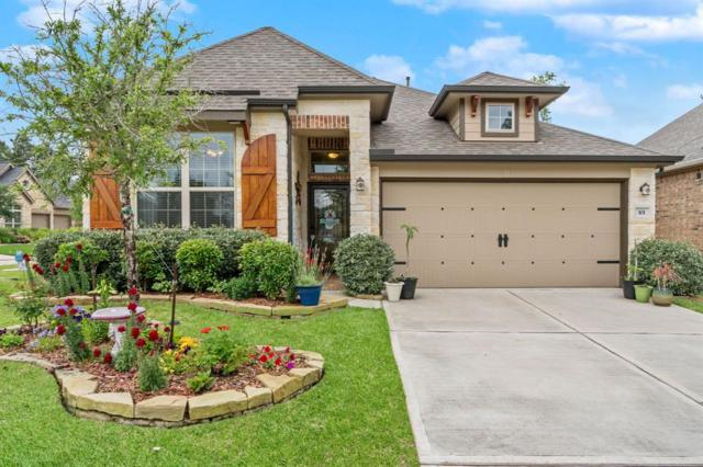 101 Logan Pass Court, Montgomery, TX 77316 (MLS #76077979) :: The SOLD by George Team