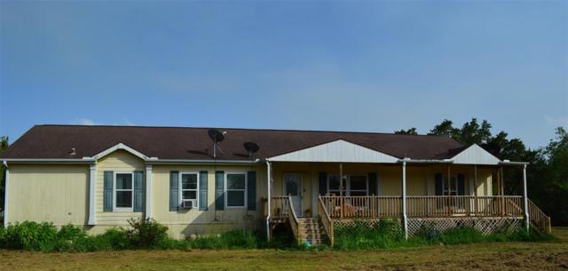 10003 County Road 210, Liverpool, TX 77577 (MLS #76131792) :: Giorgi Real Estate Group